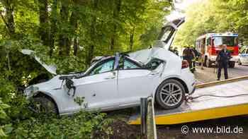 Bedburg: Baum-Crash auf der Landstraße: Golf-Fahrer († 56) stirbt   Regional - BILD