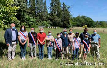 PONT-SAINT-ESPRIT Le conseil municipal des jeunes fait installer des ruches à la Blache - Objectif Gard