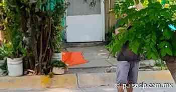 Ejecutan a joven frente a su casa, en Rioverde - Pulso Diario de San Luis