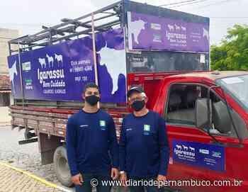 Igarassu fiscaliza rodovias para evitar acidentes com animais de grande porte - Diário de Pernambuco