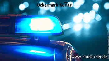 Nach Lokalbesuch Polizisten in Schwedt attackiert - Nordkurier