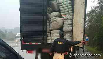 Motorista de Nova Santa Rita é preso com mais de 1 milhão de meias na BR-386 - Agência GBC