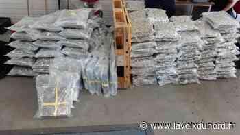 Roncq : plus de 45 kilos d'amphétamine saisies sur l'autoroute - La Voix du Nord