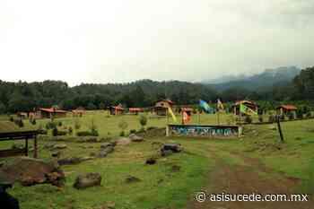 El primer santuario de luciérnagas en el Edomex se encuentra en Amecameca - Noticiario Así Sucede