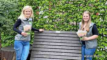 Start in die Wandersaison in Lennestadt und Kirchhundem - WP News