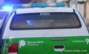 Hallaron bolsas con marihuana en Olmos - Diario El Dia