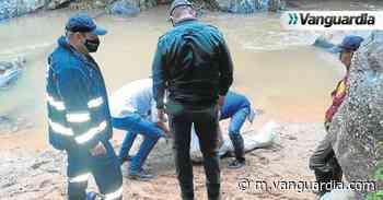 Hallan un cadáver en quebrada de Rionegro, Santander - Vanguardia