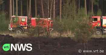 Brand legt een hectare van de Kalmthoutse Heide in de as - VRT NWS