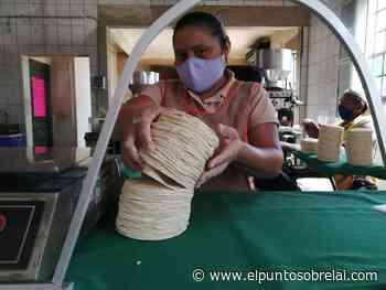 Tortillerías cierran en Felipe Carrillo Puerto por alto costo de insumos – El Punto Sobre La i - Elpuntosobrelai.com