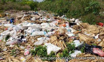 Preocupa basurero a cielo abierto de comunidad maya en Felipe Carrillo Puerto por saturación – Palco Noticias - Palco Quintanarroense