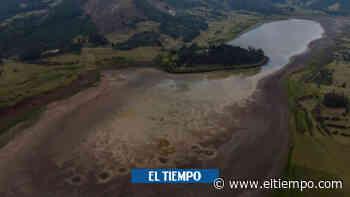 Laguna de Suesca muestra síntomas de recuperación - El Tiempo