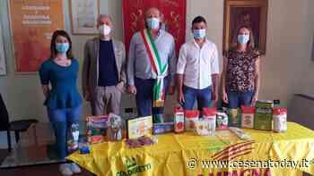 Longiano, dagli agricoltori Coldiretti donati 250 chili di cibo a chi è in difficoltà - CesenaToday