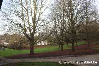 Troostplek in Boesdaalpark (Sint-Genesius-Rode) - Het Nieuwsblad