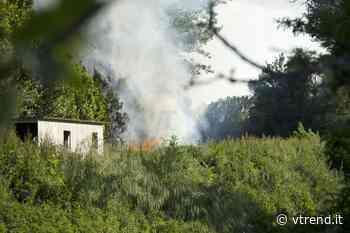 Calcinaia, fiamme al lago del Marrucco, fumo visibile anche da Pontedera - VTrend