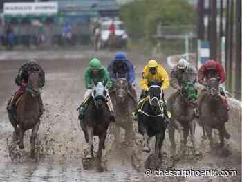 Sask. horse racing community applauds Moosomin Downs announcement - Saskatoon StarPhoenix