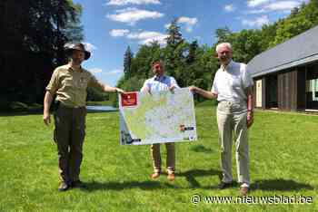 """Zoniënwoud krijgt virtueel wandelnetwerk van 170 kilometer: """"Het vermijdt heel veel verwarring en lelijkheid"""""""