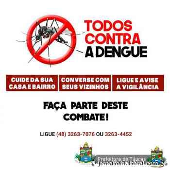 Saúde e Comunidade: Dengue está sob controle em Tijucas graças a um trabalho conjunto - Jornal Folha do Litoral - Jornal Folha do Litoral