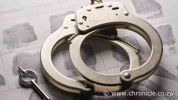 JUST IN: A decade in jail for Redcliff armed robbers - Chronicle