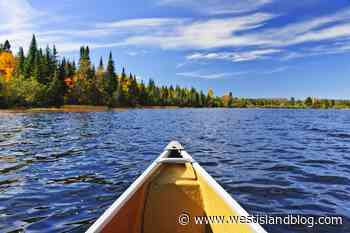 Adventurous Solo Canoes Experience on Miramichi River To Be Part Of Upcoming Documentary - West Island Blog