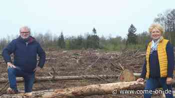 UWG will Zeichen setzen und plant Baum-Pflanzaktion mit Bürgern - come-on.de