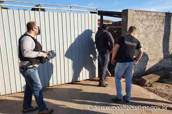 PCPR investiga maus-tratos contra galos de raça nos Campos Gerais - Polícia Civil do Paraná
