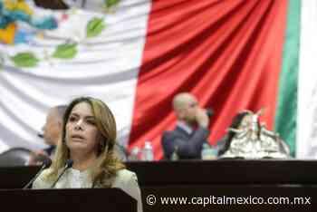 Llama la diputada Barrera Fortul a salvar a la patria y evitar que siga la destrucción. - Capital México