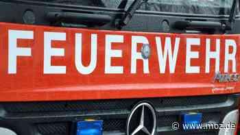 Feuerwehr im Einsatz: Feuer im Liepnitzwald – Feuerwehr Wandlitz reagiert mit mahnendem Appell - moz.de