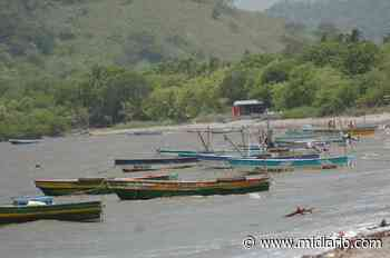 Asesinan a distribuidor de pescado en La Milagrosa, distrito de La Chorrera - Mi Diario Panamá