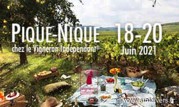 Pique-nique chez le Vigneron Indépendant au domaine d'Avrille SCEA Biotteau vendredi 18 juin 2021 - Unidivers