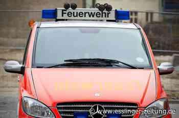 Feuerwehreinsatz auf Spielplatz in Plochingen: Feuerwehr befreit Jungen aus Klettergerüst - Plochingen - esslinger-zeitung.de