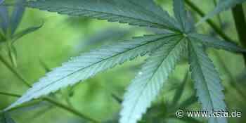 Rhein-Sieg: Paar in Hennef züchtet Cannabispflanzen auf Fensterbank - Kölner Stadt-Anzeiger