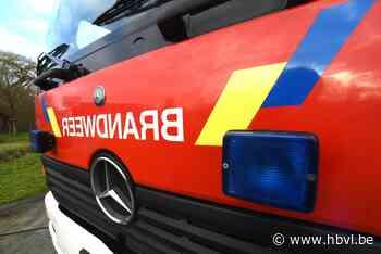 Brandweer blust haagbrand in Herk-de-Stad - Het Belang van Limburg