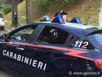Trovato nel garage a rubare utensili e statuette: arrestato a Montelupo Fiorentino - gonews.it - gonews