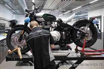 Triumph Portugal abre recrutamento para vagas em Lisboa e Pombal - Andar de Moto
