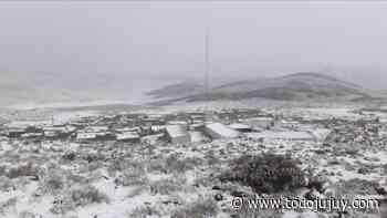 Rinconada se vistió de blanco tras la intensa caída de nieve - todojujuy.com