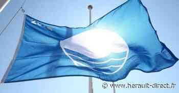 Marseillan - Pavillon Bleu 2021 : Il flottera sur les ports et les plages marseillanaises - HERAULT direct