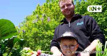 Verein der Gartenfreunde Henstedt-Ulzburg hat alle Parzellen verpachtet - Kieler Nachrichten