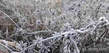 Semana começa com temperaturas negativas no RS; Vacaria registrou -2ºC - G1