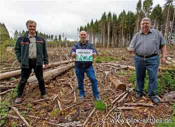 Selters bittet um Spenden für den Wald - Blick aktuell