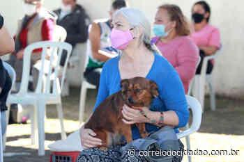 CastraPet garantiu a esterilização de mais de 700 animais em Piraquara – Correio do Cidadão - Correio do CIdadão