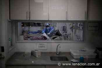 Coronavirus en Argentina: casos en Valle Fértil, San Juan al 1 de junio - LA NACION