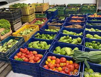 Prefeitura de Areal inicia o Projeto Alimento Saudável na sua mesa - Portal GIRO