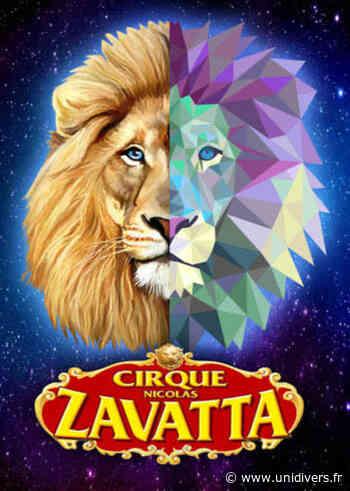 Cirque Zavatta Douchet Rond point de Villeneuve 44350 Guerande mercredi 7 juillet 2021 - Unidivers