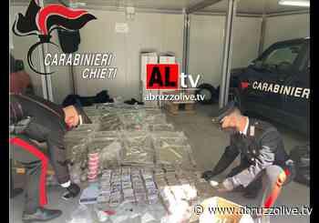 Tra Francavilla al Mare e San Vito. Cento chili di droga e una serra industriale di marijuana - VIDEO - AbruzzoLive.tv