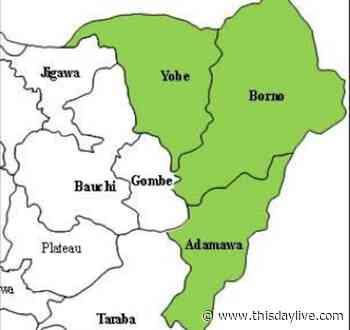 Adamawa, Borno, Yobe Ranked Nigeria's Most Dangerous States - THISDAY Newspapers