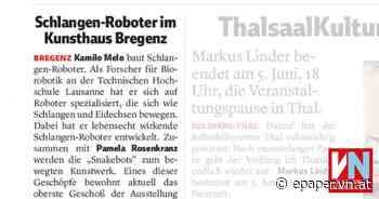 Schlangen-Roboter im Kunsthaus Bregenz - Vorarlberger Nachrichten   VN.AT