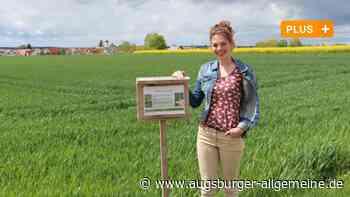 Junge Attenhoferin klärt mit Schildern über Landwirtschaft auf - Augsburger Allgemeine