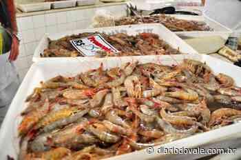 Pesca de camarão volta a ser liberada em Angra dos Reis - Diario do Vale