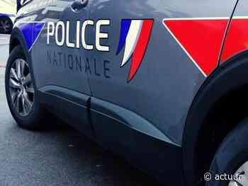 Yvelines. Limay : il sort une arme car on reproche à sa mère de ne pas tenir son chien en laisse - actu.fr