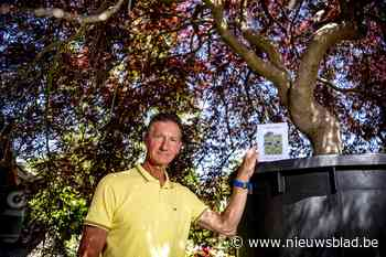 """Paul veilt tachtigjarige boom van overleden vrouw: """"Opbrengst naar kinderkanker vzw"""""""
